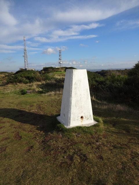 Braid hill