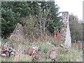 NT4450 : Ruin at Middletoun by M J Richardson