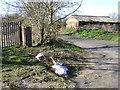 SP0576 : Flytipping by Headley Heath Lane by Robin Stott