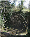 SP0677 : Disused pit by the bridleway below Crabmill Farm by Robin Stott