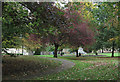 NY9363 : Park close to Hexham Abbey by Trevor Littlewood