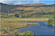 NH3239 : The Deanie Burn below Deanie Lodge by Nigel Brown