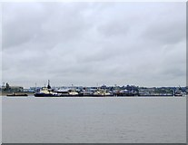 TQ6674 : Tugs moored at Denton, Gravesend Reach by Stefan Czapski