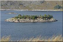 NH1939 : Island in Loch Monar by Nigel Brown