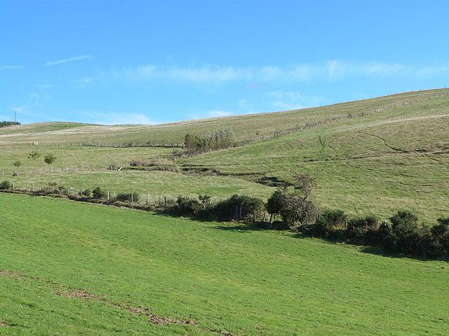 Grassland and stream above Glenwood