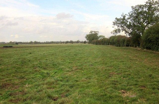 Field by Langar Grange by Derek Harper