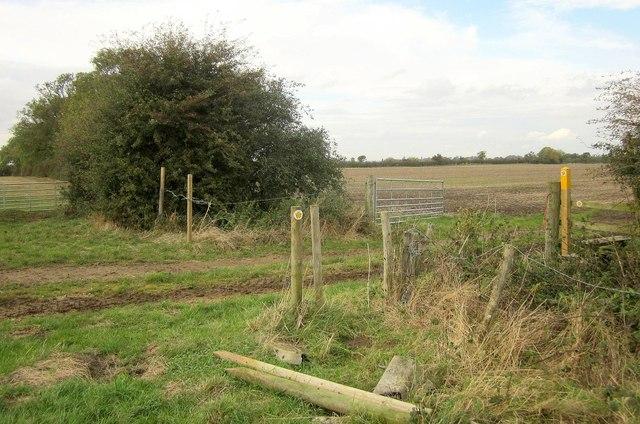 Footpath near Langar Grange by Derek Harper