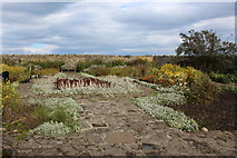 NU1341 : Walled Garden on Lindisfarne by Chris Heaton
