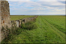 NU1341 : Pastures on Lindisfarne by Chris Heaton