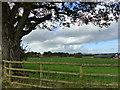 SO4210 : View towards Parc-y-Deri Farm by Ruth Sharville