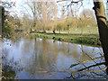 SP2965 : River Avon by Emscote gardens, Warwick 2014, March 9, 15:44 by Robin Stott