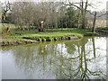 SP2965 : Floodmeadow, River Avon by Emscote Gardens, Warwick 2014, March 12, 15:54 by Robin Stott