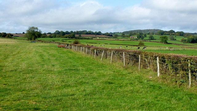 Farmland south of Llanfair Discoed
