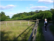 SP8800 : Footpath near View Farm by Nigel Mykura