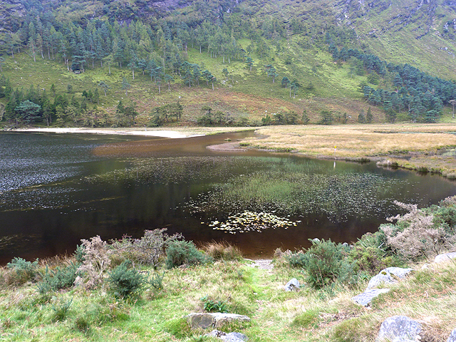 Head of the Upper Lake at Glendalough