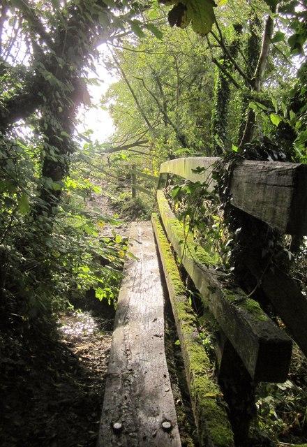 Footbridge near the Dove