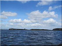 NU2235 : Inner Farne Islands by Matthew Chadwick