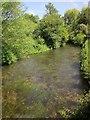 SU0931 : Butcher's Brook, Wilton by Derek Harper