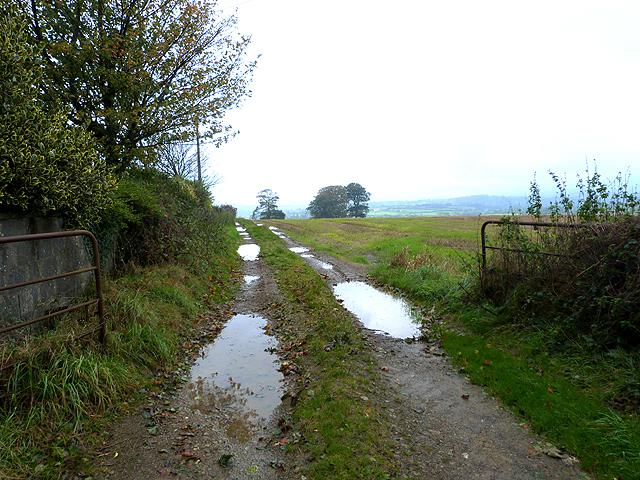 Farm road near Cunniamstown