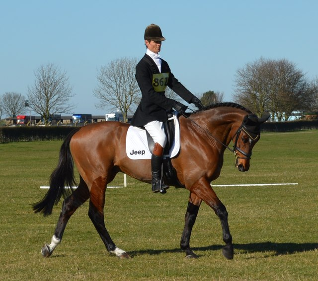 Lincolnshire Horse Trials: William Fox-Pitt and Parklane Hawk