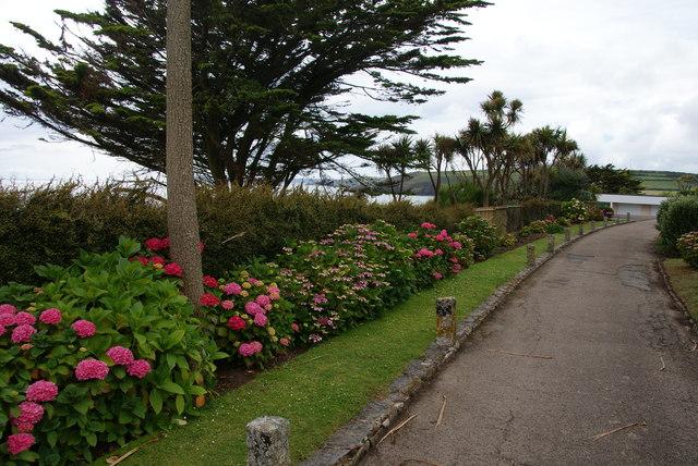 Track through Sea Meads Private Estate