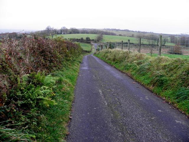 Ballymullarty Road, Ballymullarty by Kenneth  Allen