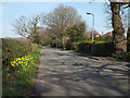 SP0874 : Northeast on Barkers Lane, Inkford by Robin Stott