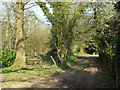SP0874 : Footpath to Wythall along a shared drive, off Tanners Green Lane by Robin Stott