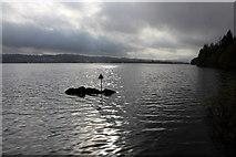 SD3898 : Bass Rock by Chris Heaton