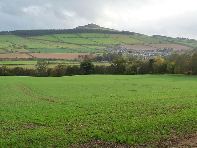 Newly sown field below Minto