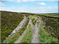 SE0127 : Path fork between Hebden Royd FPs 22 and 25 by Humphrey Bolton