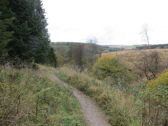 Path, Gisburn