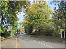 SJ4068 : Mill Lane, Upton-by-Chester by Sue Adair