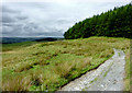 SN7763 : Old drove road to Strata Florida, Ceredigion by Roger  Kidd