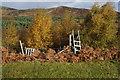 NN7456 : Ladder stile off Schiehallion Road, Tay Forest Park by Ian S