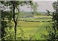 ST9722 : Farmland, Elcombe by Derek Harper