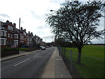 TM1543 : Gippeswyk Avenue by Hamish Griffin