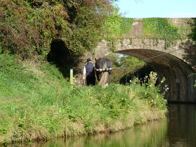 Approaching Tidcombe Bridge, on the Grand Western Canal, Tiverton