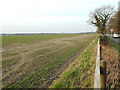 SP0873 : Unusually large field between Forshaw Heath Lane and the River Cole by Robin Stott