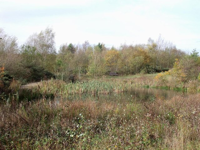 Pond, walkway and bench at New Lount Nature Reserve