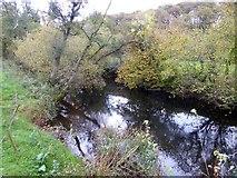 SS7008 : The River Taw at Hawkridge Bridge by David Smith