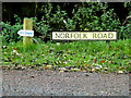 TG1807 : Norfolk Road sign by Adrian Cable