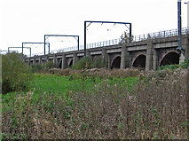 SK6593 : Bawtry - railway viaduct (from NE) by Dave Bevis