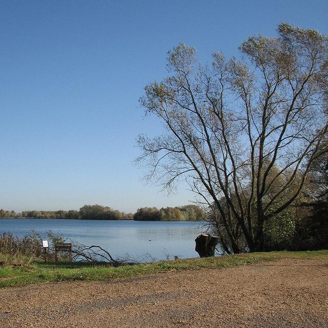 Fen Drayton Lakes: Ferry Lagoon