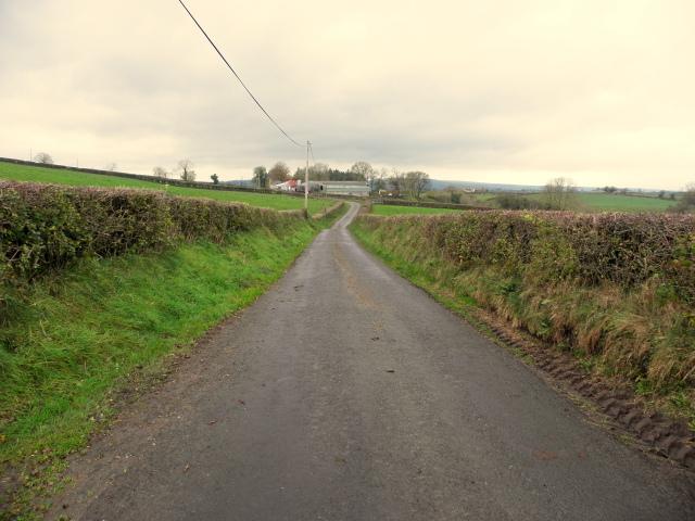 Camus Road by Kenneth  Allen