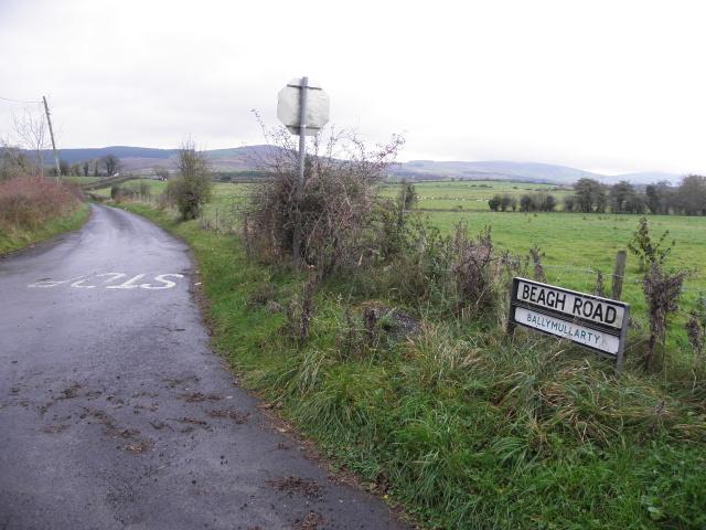 Beagh Road, Ballymullarty by Kenneth  Allen