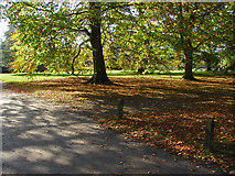 TQ1352 : Autumn sunshine, Polesden Lacey by Alan Hunt