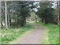 NS8267 : Sparkling road by Richard Webb
