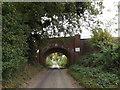 TM2199 : Railway Bridge on Brick Kiln Lane by Adrian Cable