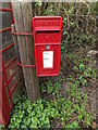 TG2200 : Ipswich Road near Public House Postbox by Adrian Cable